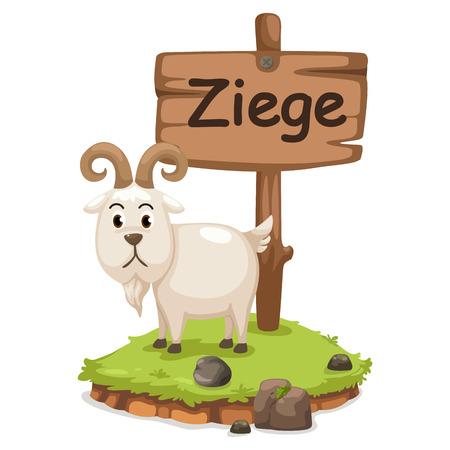 baby goat: animal alphabet letter z for ziege illustration vector