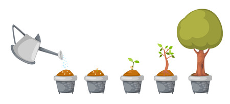 illustration of watering can with tree life cycle vector Vector