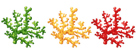 algae cartoon: Illustration of a coral vector