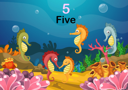 sea mammal: Illustration of number five sea horse under the sea vector