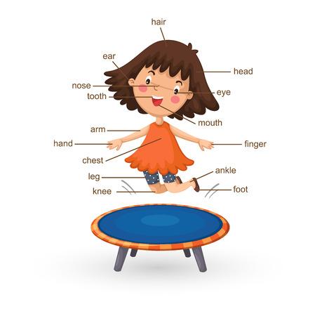 Der Menschliche Körper Illustration: Ein Mädchen. Körperteile Namen ...
