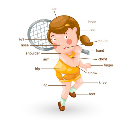 body language: illustration of vocabulary part of body vector