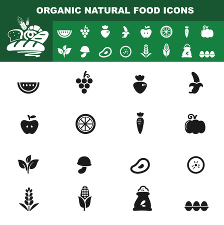 frozen meat: illustration of organic natural food icon vector Illustration