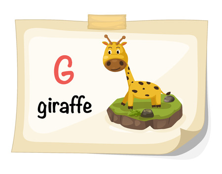 g giraffe: Illustration of animal alphabet letter G for giraffe illustration vector