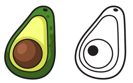 sliced fruit: Illustration of isolated colorful and black and white avocado for coloring book vector