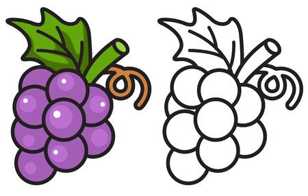 illustratie van geïsoleerde kleurrijke en zwart-witte druiven voor kleurboek