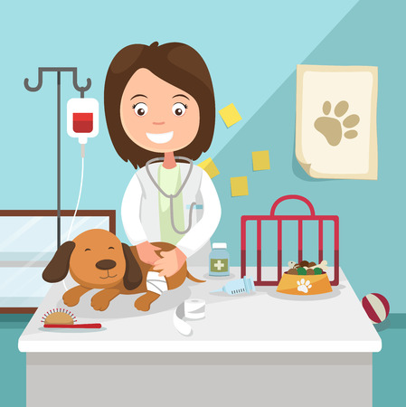 The idea of female veterinarian curing illustration, vector Çizim