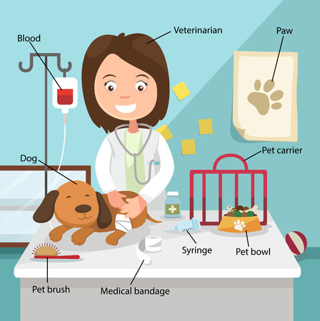 The Idea of Female Veterinarian Curing the Dog with Related Vocabulary Index illustration, vector Vector
