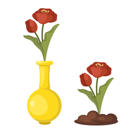 vase of flowers: illustration of isolated flowers in vase vector Illustration