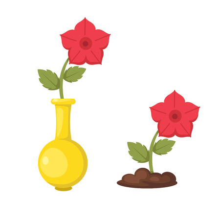 illustration of isolated flowers in vase vector Illustration