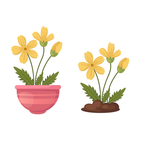 vase: illustration of isolated flowers in vase vector Illustration