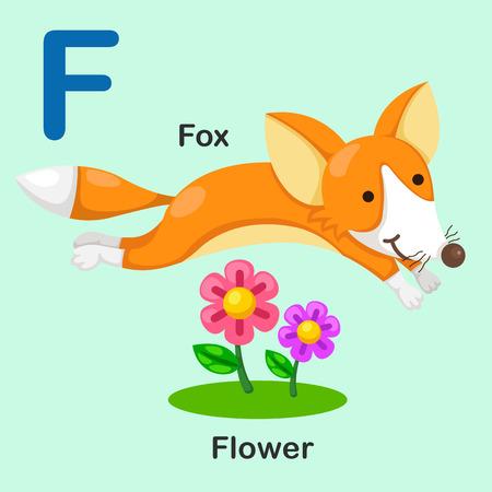 Illustration Isolated Animal Alphabet Letter F-Fox-Flower.Vector
