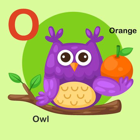 cartoon words: Illustration Isolated Animal Alphabet Letter O-Owl,Orange.Vector