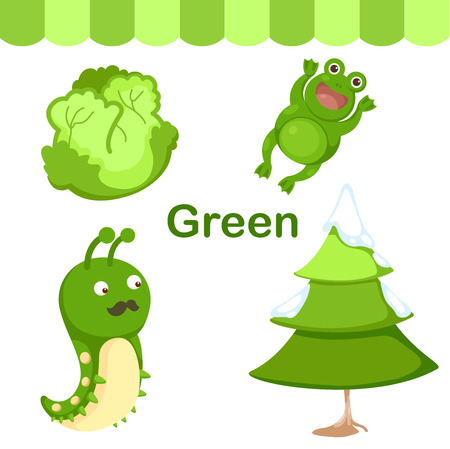 early learning: Illustration of isolated color green group vector