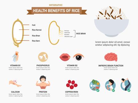 thiamine: Health benefits of rice infographics.illustration.