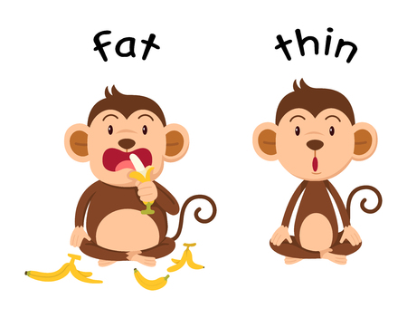 opposite: Opposite words fat and thin illustration