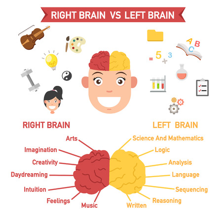 functions: Left and right brain functions,vector illustration