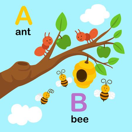 Alfabet Litera A-ant, B-bee, ilustracji wektorowych