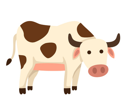 moo: illustration of isolated cow on white background vector