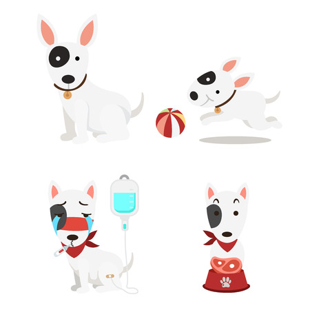 illustration isolated cute dogs set on white background vector