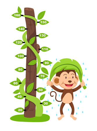 Meter wall with monkey.vector illustration.