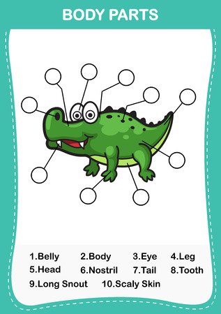 scaly: Illustration of crocodile  vocabulary part of body,Write the correct numbers of body parts.vector Illustration