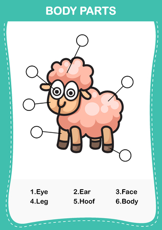 computer education: Illustration of sheep vocabulary part of body,Write the correct numbers of body parts.vector