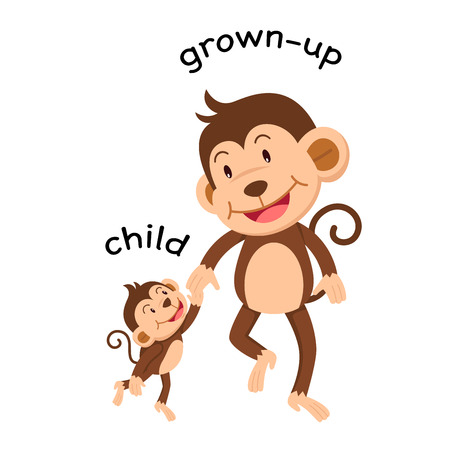 Opposite words child and grown up vector illustration Illustration