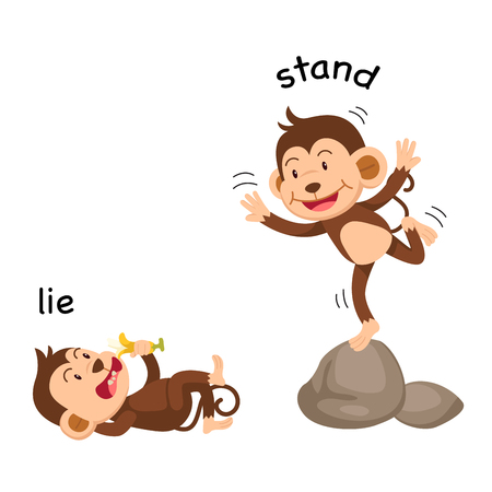 Opposite words lie and stand vector illustration