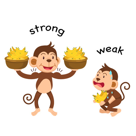 Opposite words strong and weak vector illustration