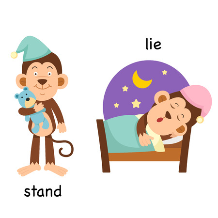 lesson: Opposite  stand and lying down vector illustration