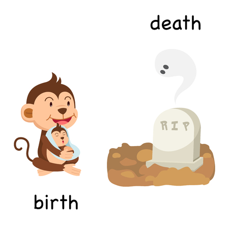 Opposite birth and death vector illustration