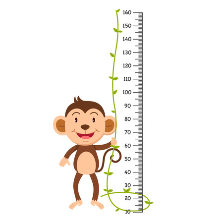 Meter wall with monkey. Vector illustration.  イラスト・ベクター素材
