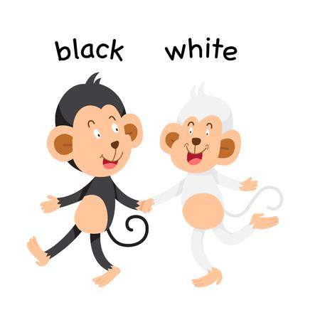 Opposite black and white vector illustration Vetores