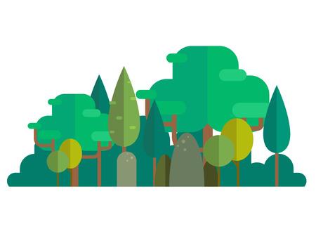 Forest illustration. Illusztráció