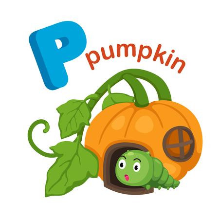 literacy: Illustration Isolated Alphabet Letter P Pumpkin.vector Illustration