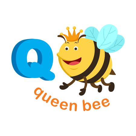 Illustration lettre alphabet isolé Q reine bee.vector