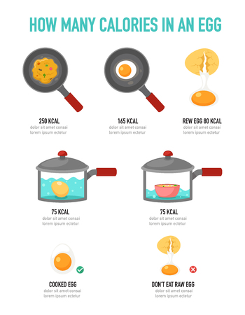 How many calories in an egg infographic,vector illustration