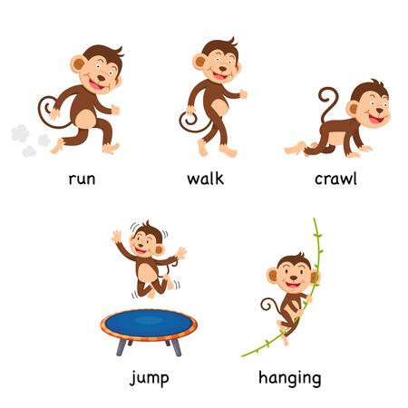 cartoon monkey vocabulary vector illustration Ilustración de vector