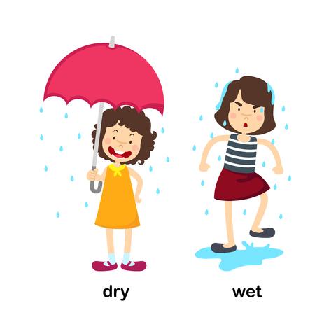 Opposite dry and wet vector illustration Vetores
