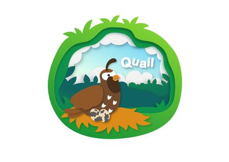 Alphabet Letter Q-quail,paper cut concept vector illustration Ilustração