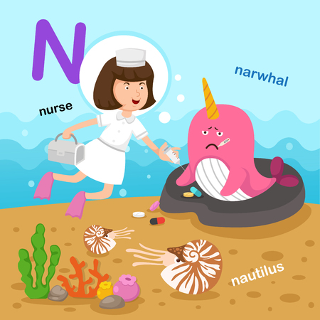 Illustration Isolated Alphabet Letter N-narwhal,nautilus,nurse.vector