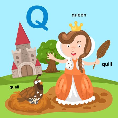Illustration Isolated Alphabet Letter Q-quail,queen,quill.vector Ilustração