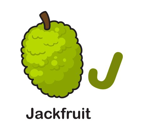Alphabet Letter J-Jackfruit vector illustration