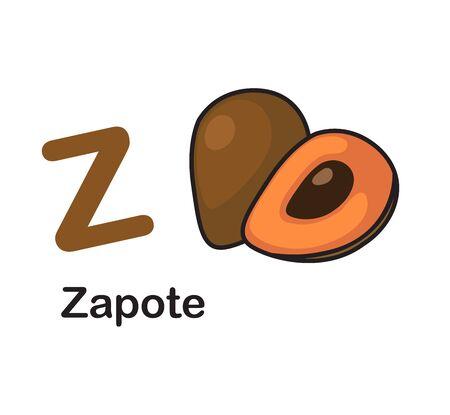 Alphabet Letter Z-Zapote vector illustration