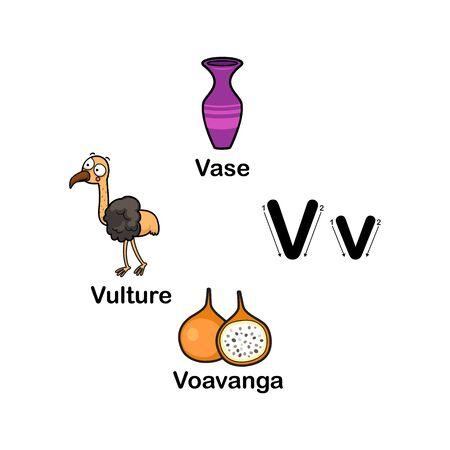 Alphabet Letter V-vase,voavanga,vulture vector illustration 向量圖像
