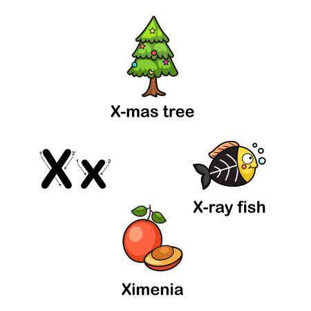 Alphabet Letter X-x mas tree,ximenia,x ray fish vector illustration