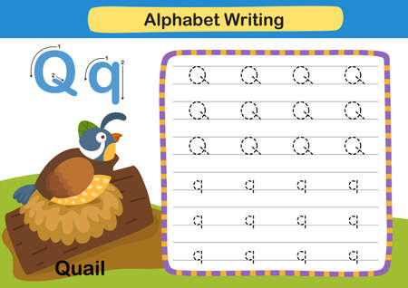 Alphabet Letter exercise Q-Quail with cartoon vocabulary illustration, vector