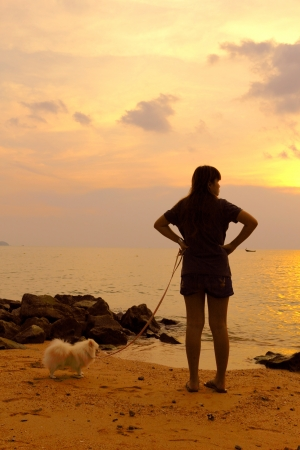 pomeranian: run and play with my dog on the beach, pattaya thailand Stock Photo