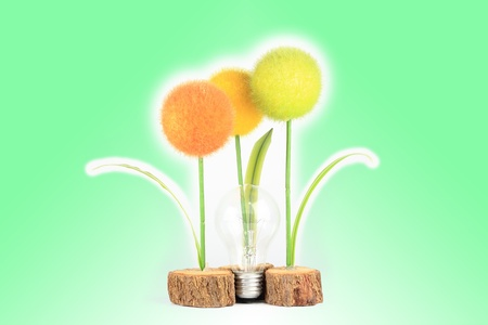 light bulb with plant color on white photo